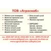 Яичный порошок оптом по Украине