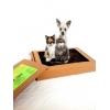 Натуральный кошачий и собачий лоток-туалет «ПИС ПИС».