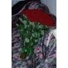 Доставка цветов Ивано-Франковск