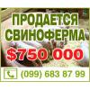 Продам действующий свинокомплекс 2700 кв. м. с. Покровское