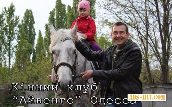 Пони и ослик для детского праздника