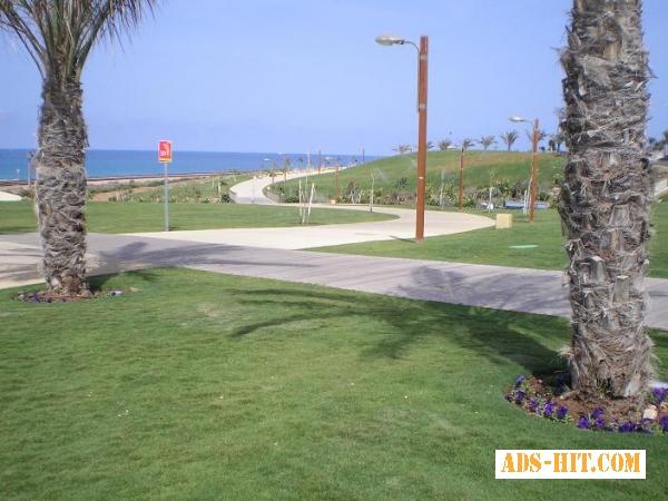 Краткосрочная аренда квартир посуточно Хайфа Израиль.