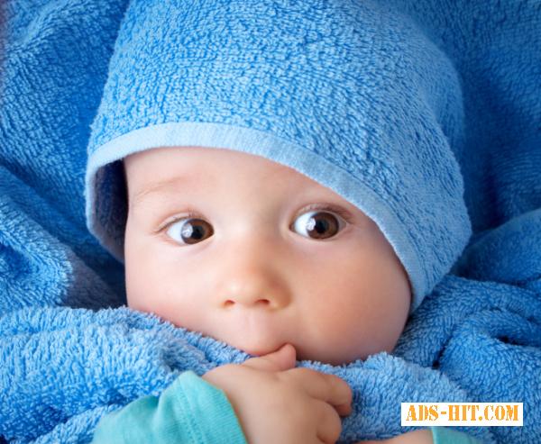 Программа донорства яйцеклеток, Десна