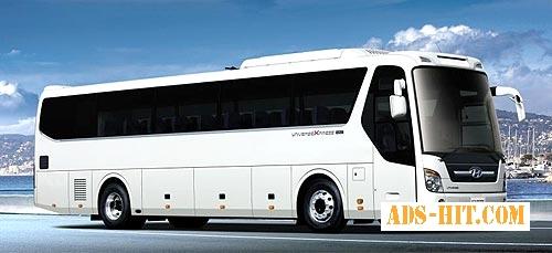 Автобус Алчевск - Луганск- Брянка - Курск - Орел - Брянск и обратно.