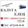 Автобус Стаханов - Алчевск - Луганск - Елец - Калуга и обратно.