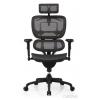Компьютерное кресло ALS ERGOHUMAN Black, черная база