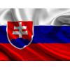 Работа в Словакии по биометрии, польской визе и на ВНЖ. Без предоплат в Украине.