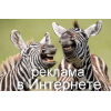 Реклама в Интернете Одесса