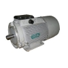 Электродвигатель 4ПО80В1
