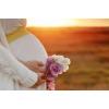 Программа суррогатного материнства, пгт Александровка