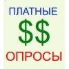 Участник оплачиваемых опросов - работа в интернете