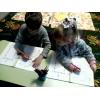 Подготовка к школе на Позняках, Харьковском, Осокорках (1-й урок-бесплатный) , Мини-сад.