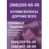 Покупка волос в Днепре Продать волосы в Днепре дорого волосы Днепропетровск