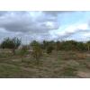Начатое строение в Николаеве, купить участок в Николаеве, домик на Полигоне, участок в поселке Полигон