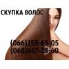 Покупка волос в Одессе ДОРОГО Ваши волосы в Одессе