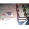 . Сдам жильё в Николаеве 0990088307