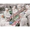 Работа в Польше, на Мясоперерабатывающие заводы