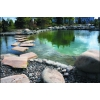Плавательные пруды, эко-пруды, озера, искусственные водоемы