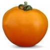 Семена оранжевого томата Айсан (KS 18 F1) фирмы Китано