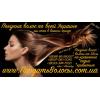 Продать волосы в Никополе дорого Скупка волос Никополь волосы