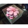 Аренда бумажных цветов. Более 200 вариантов цветов на любой праздник.