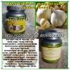 Гарлик-чесночные капсулы: Экстракт масла чеснока Garlik Oil Extract от комп. Тибемед