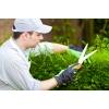 Садовник. Работа в Польше